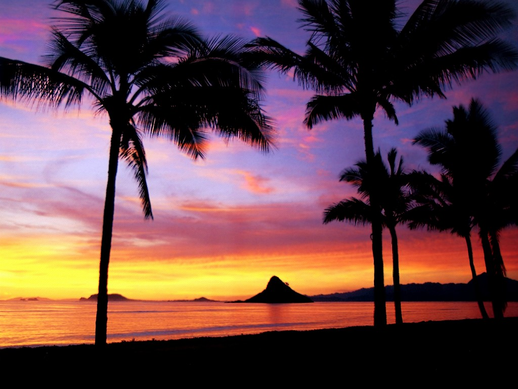 Hawaii At sunset