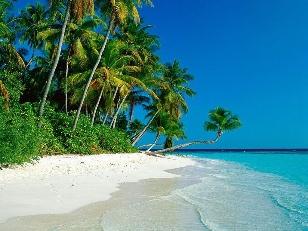 Image Paradise Island Blessing Beach Wallpaper