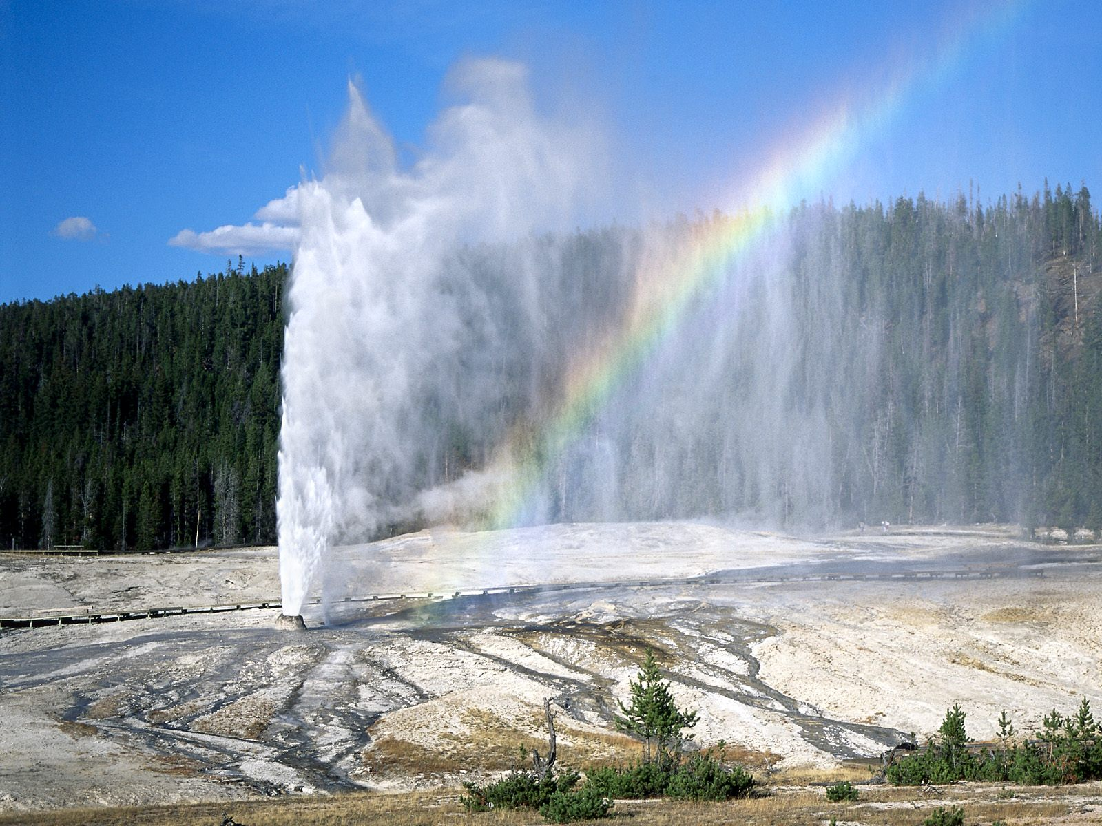 Yellowstone%20National%20Park,%20Wyoming